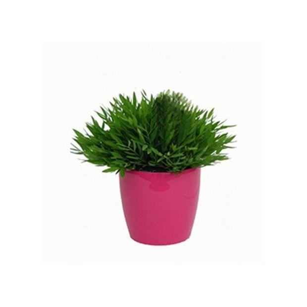 Bambou d 39 int rieur cache pot framboise plantes et jardins - Pot decoratif interieur ...
