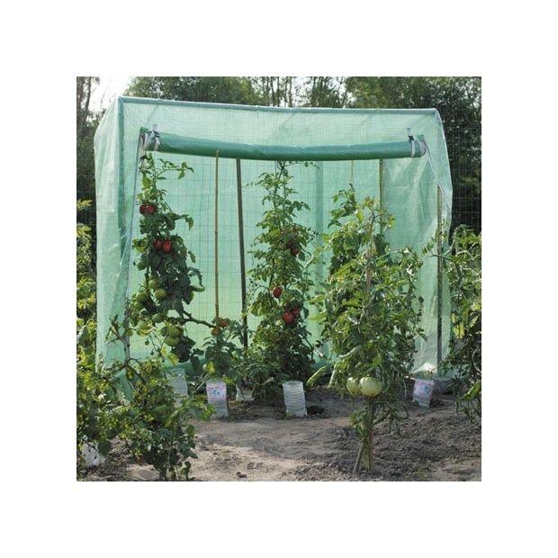 Serre tomates large 1 52m acd garden plantes et jardins - Serre a tomate ...