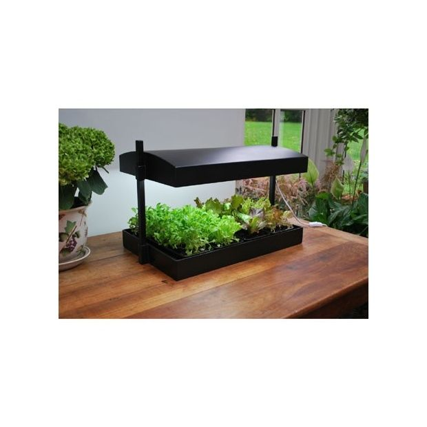 Ampoule de remplacement pour serre d 39 int rieur plantes for Lampe pour plante d interieur