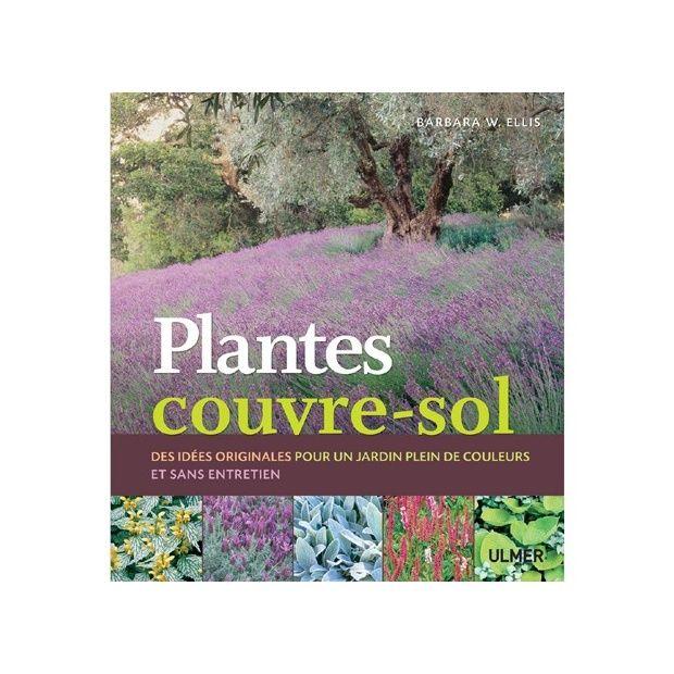 plantes couvre sol plantes et jardins. Black Bedroom Furniture Sets. Home Design Ideas