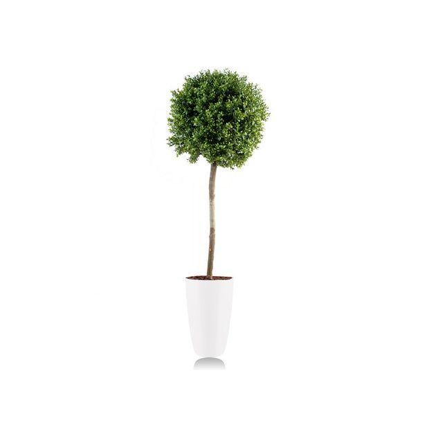 Buis boule tige h110cm tronc naturel feuillage artificiel pot elho blanc plantes et jardins - Buis boule sur tige ...
