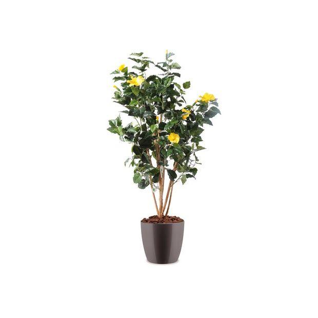 Hibiscus jaune H150cm (tronc naturel, feuillage artificiel ...