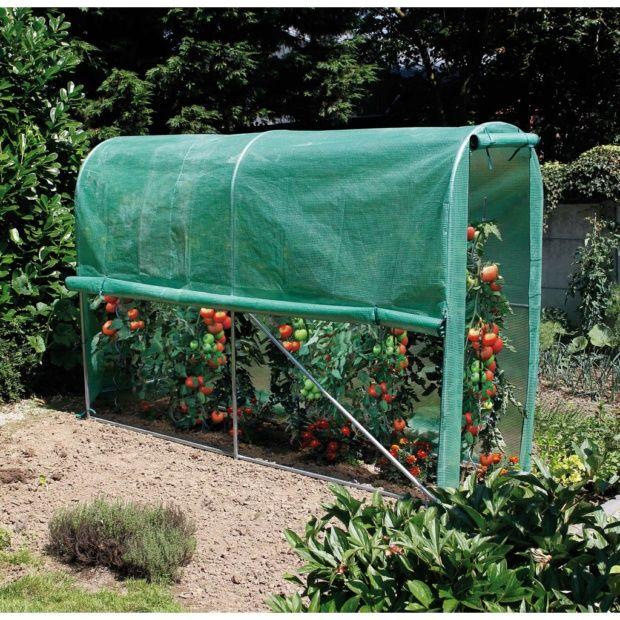 serre tunnel mara ch re new tomato 3 m nortene. Black Bedroom Furniture Sets. Home Design Ideas