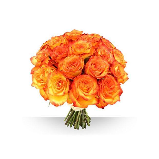 bouquet de 21 roses gros boutons safran plantes et jardins. Black Bedroom Furniture Sets. Home Design Ideas