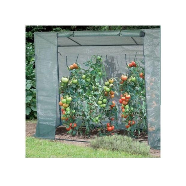 Serre de culture pour tomates intermas celloplast for Plantes et jardins serres