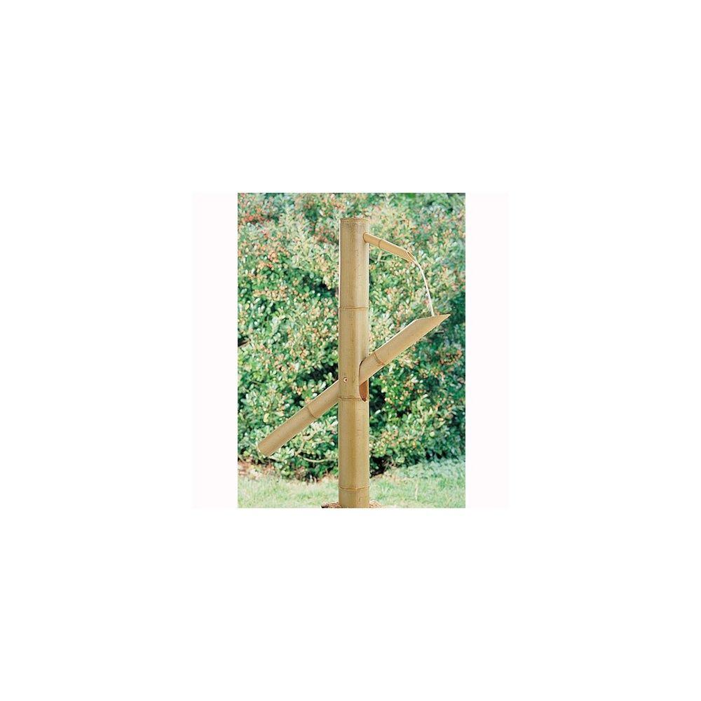 Fontaine shishi odoshi intermas celloplast plantes for Fontaine interieur bambou