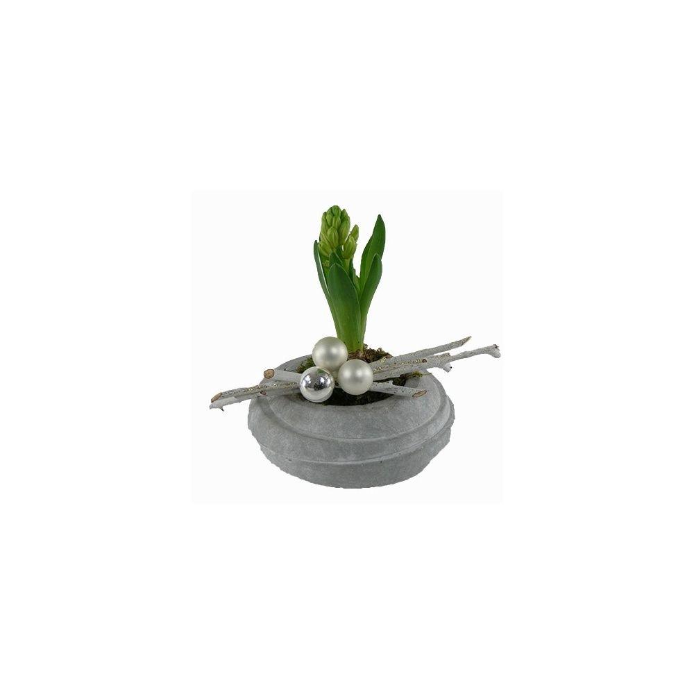 composition no l jacinthe c ramique b ton plantes et. Black Bedroom Furniture Sets. Home Design Ideas