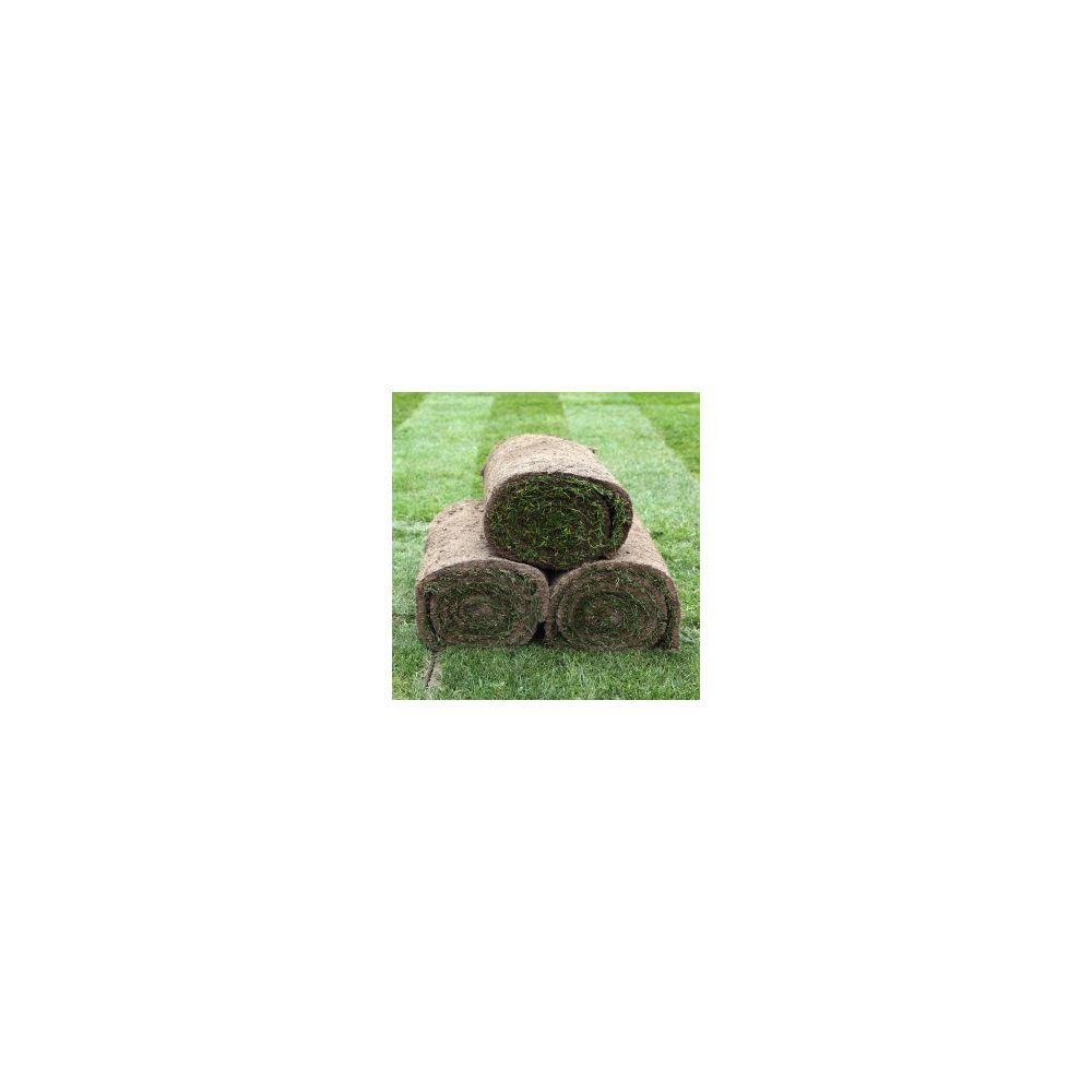 Gazon naturel en rouleau x 1m2 - Plantes et Jardins