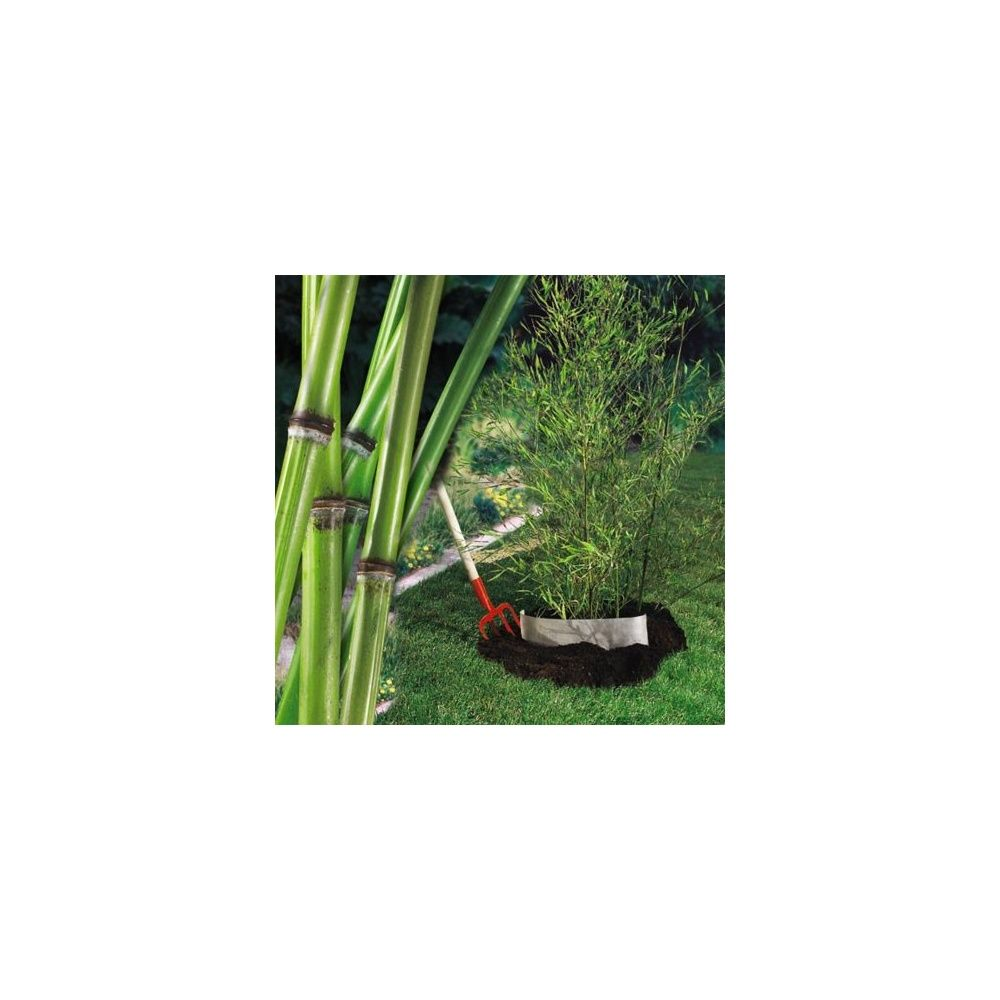 barri re anti rhizomes 0 75x10m stop racine intermas celloplast plantes et jardins. Black Bedroom Furniture Sets. Home Design Ideas