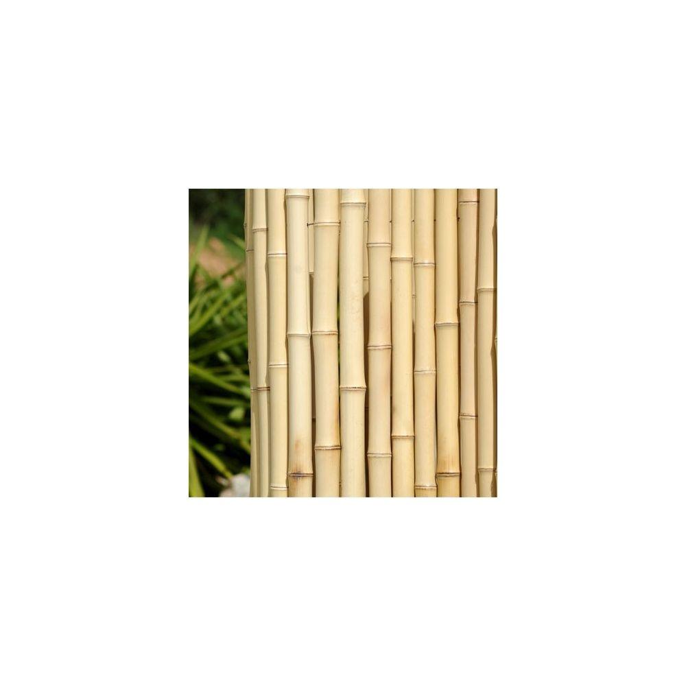 cl ture r guli re en bambou l200xh260 cm diam tre 2cm couleur naturel plantes et jardins. Black Bedroom Furniture Sets. Home Design Ideas