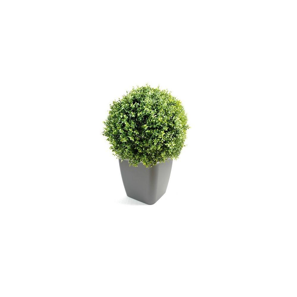 buis boule 30cm pot lechuza plantes et jardins. Black Bedroom Furniture Sets. Home Design Ideas