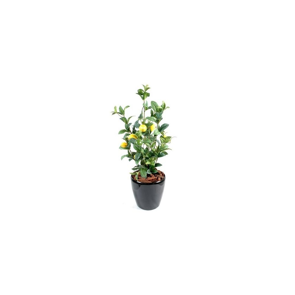 citronnier mini feuillage artificiel hauteur 63cm pot lechuza noir brillant plantes et jardins. Black Bedroom Furniture Sets. Home Design Ideas