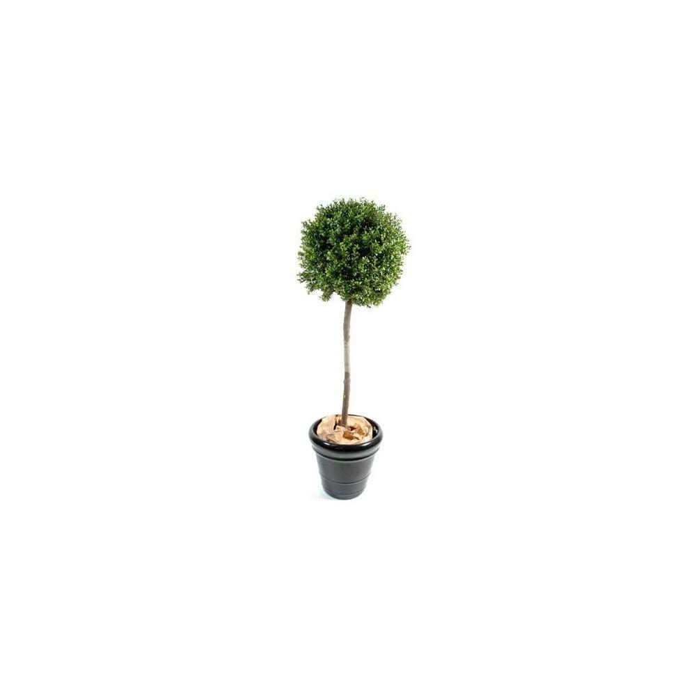buis boule sur tige h140cm tronc naturel feuillage. Black Bedroom Furniture Sets. Home Design Ideas