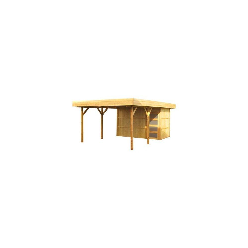 abri de jardin m bois 19 mm pefc toit plat grande avanc e de toit plantes et jardins. Black Bedroom Furniture Sets. Home Design Ideas