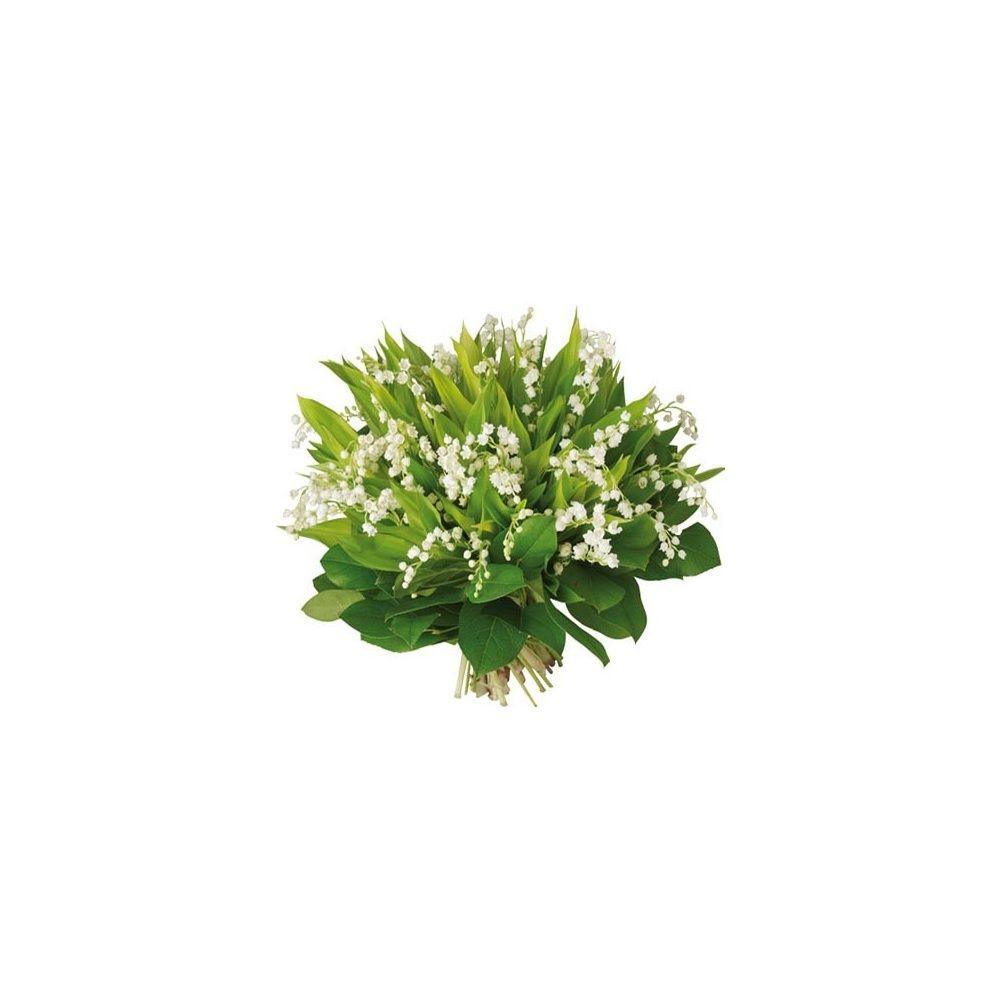 Bouquet de 50 brins de muguet plantes et jardins for Muguet livraison domicile