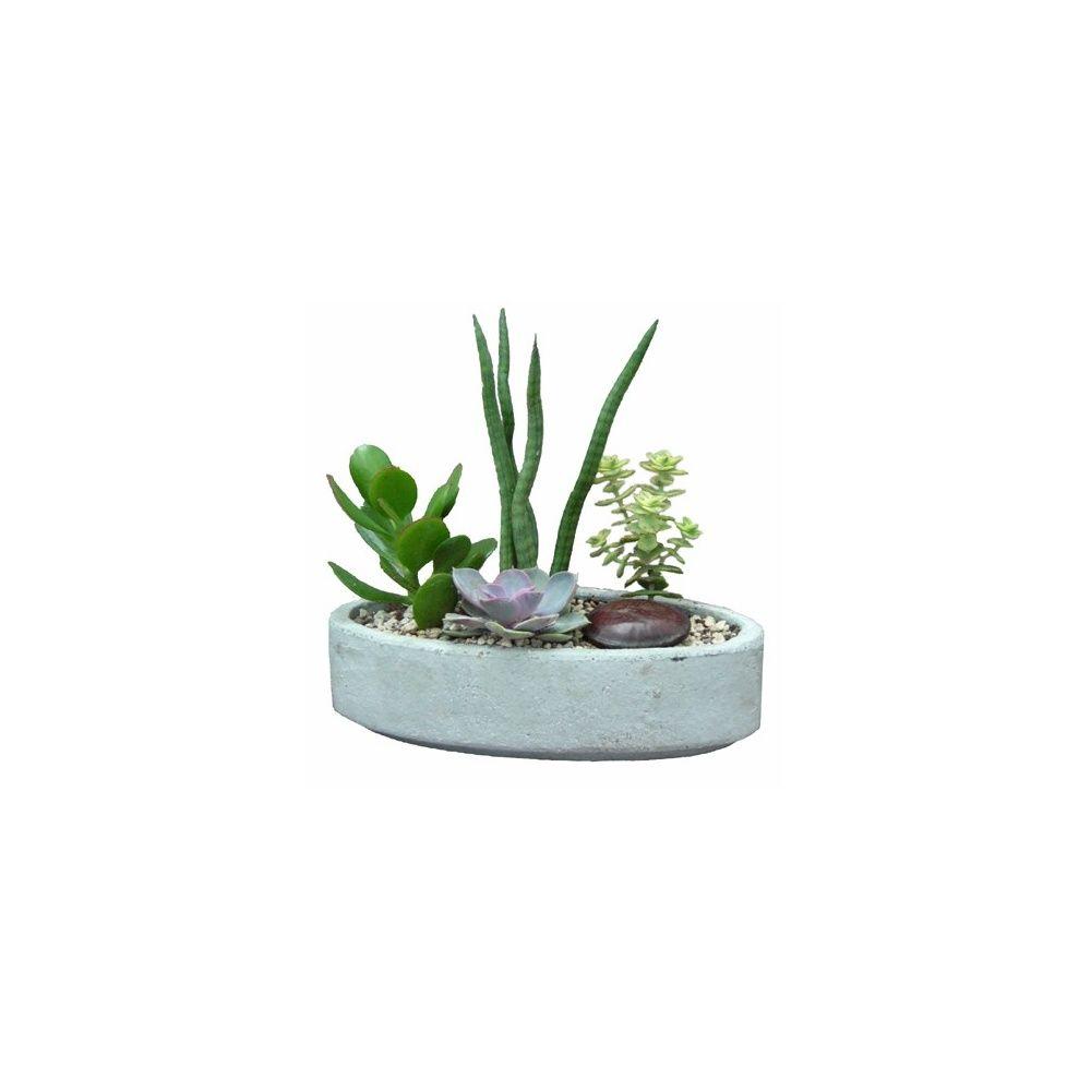 Composition de plantes dexterieur dlicieux plantes for Plante fleurie en pot exterieur