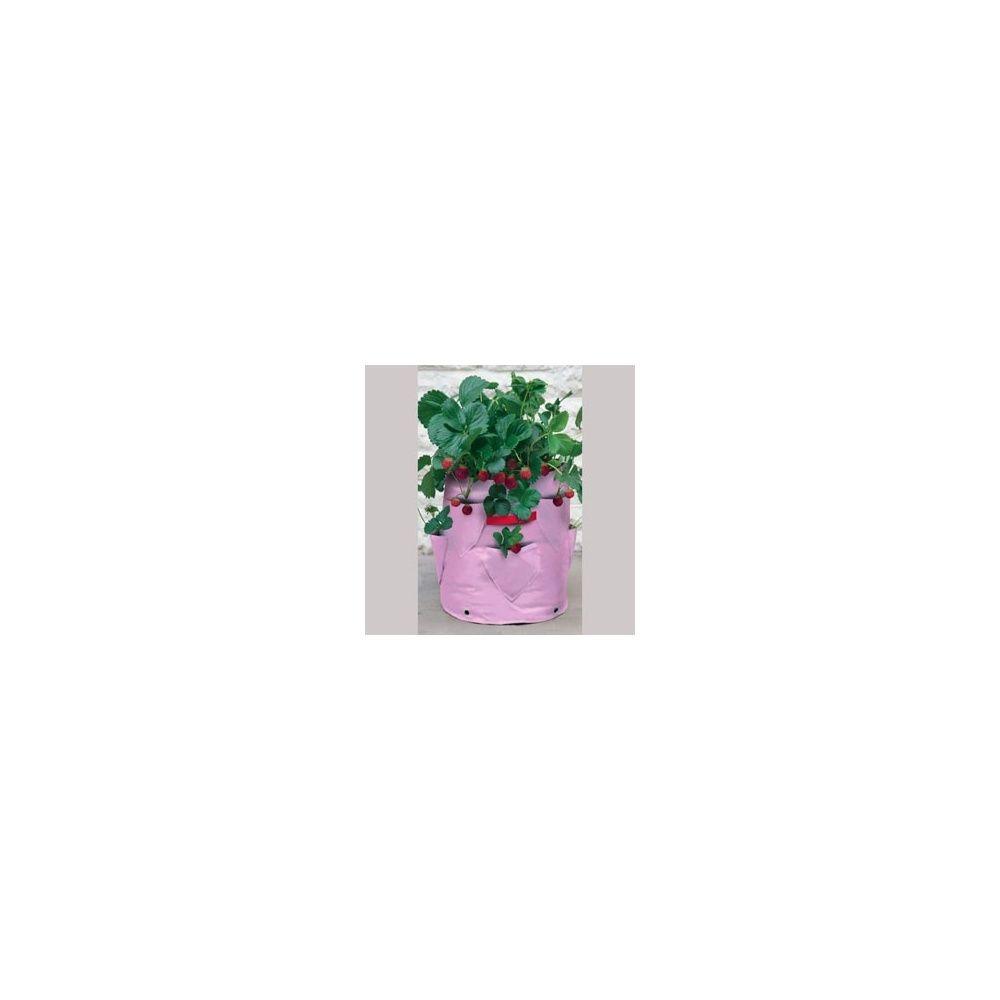 Sac de plantation pour fraisier et herbes aromatiques lot for Plantation fraisier
