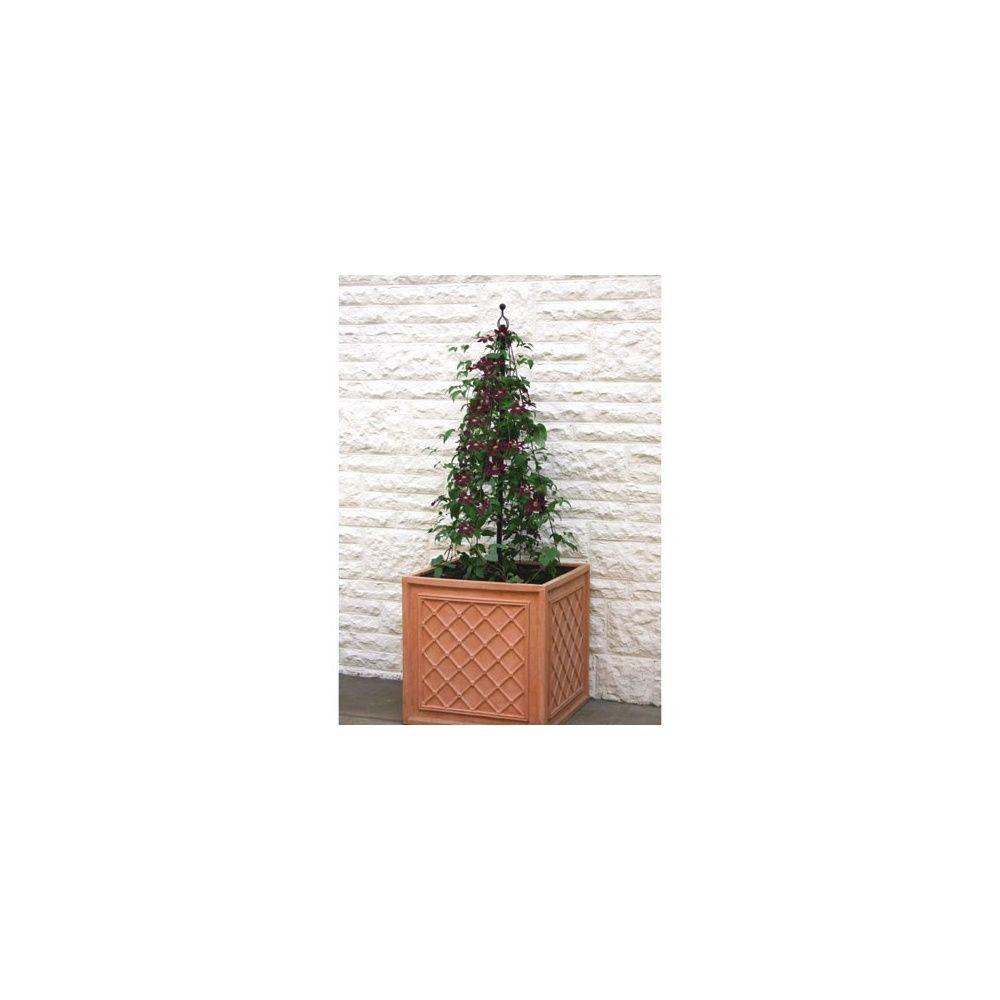 structure tr pied basse pour tomates ou plantes grimpantes plantes et jardins. Black Bedroom Furniture Sets. Home Design Ideas