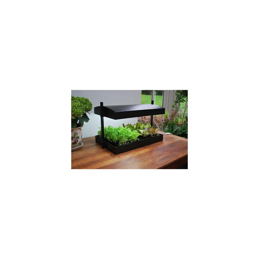 Serre d 39 int rieur avec lampes spectre complet plantes for Lampes d interieur