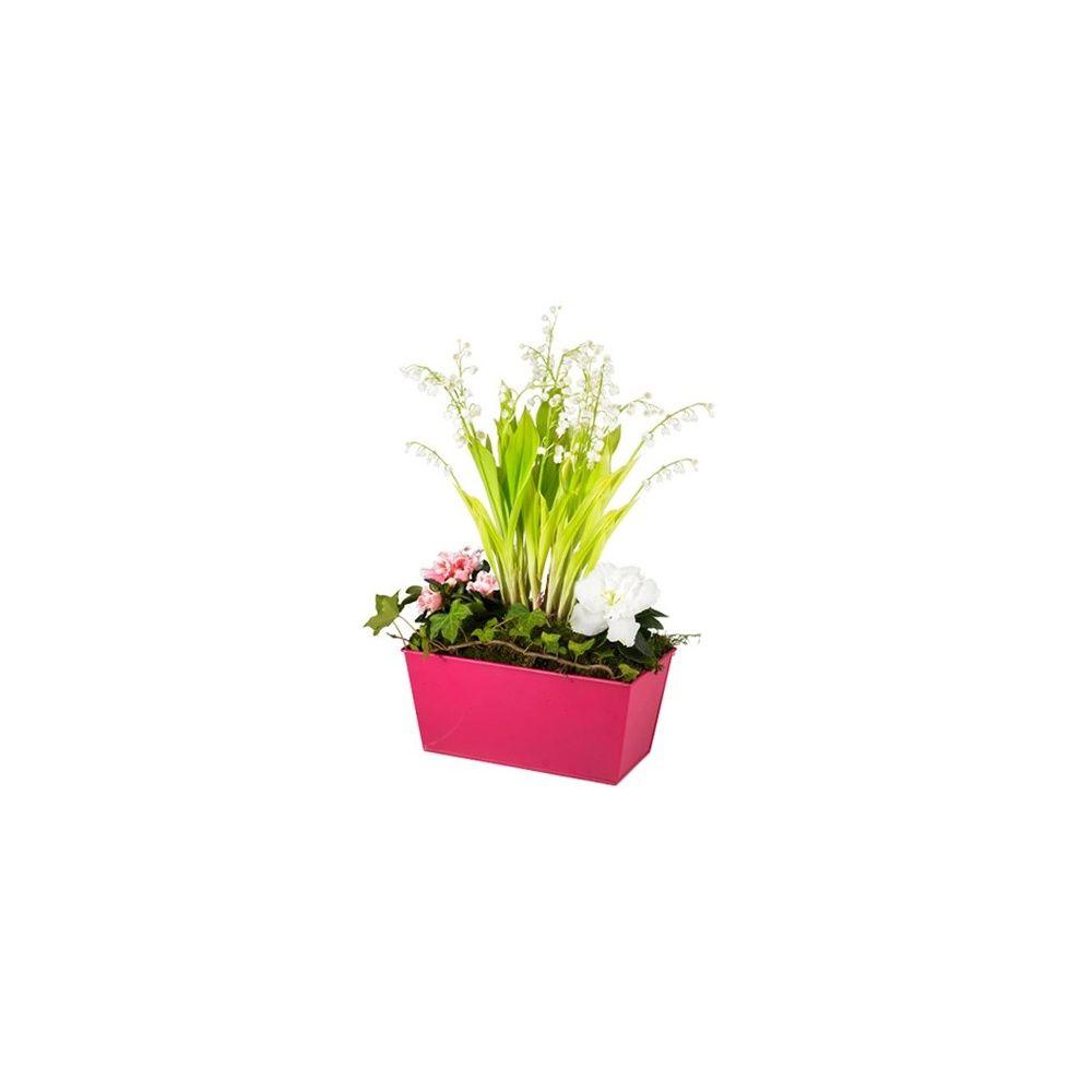 jardini re de muguet plantes et jardins. Black Bedroom Furniture Sets. Home Design Ideas