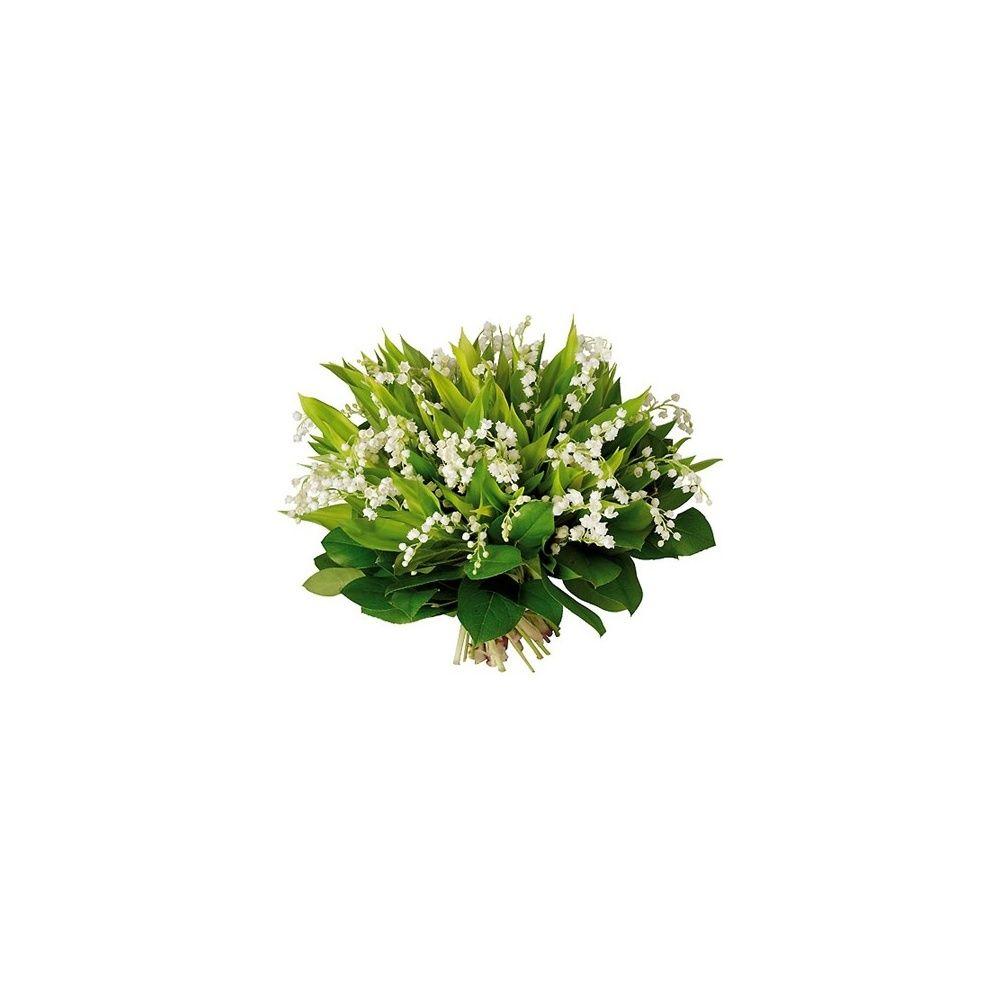 Bouquet de muguet plantes et jardins for Bouquet de fleurs muguet