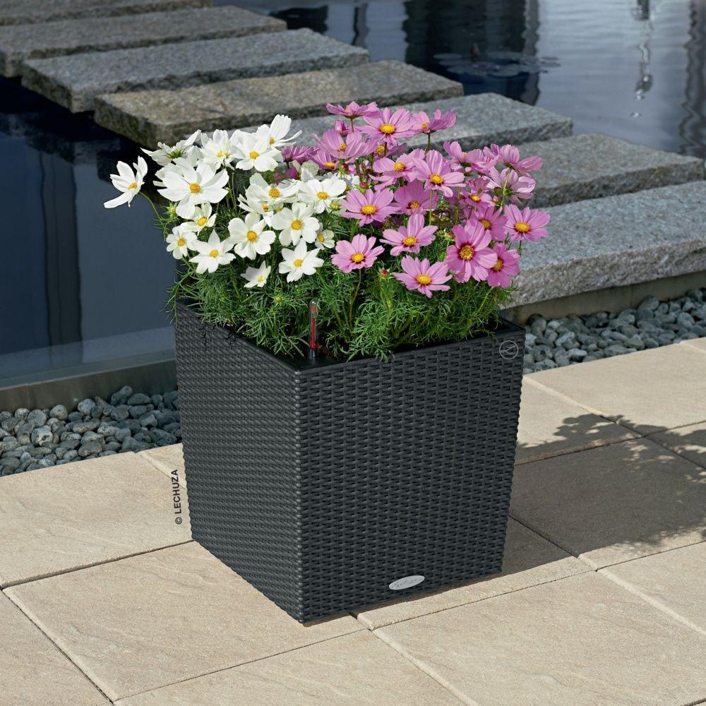 pot lechuza cube cottage l40 h40 cm granit plantes et. Black Bedroom Furniture Sets. Home Design Ideas