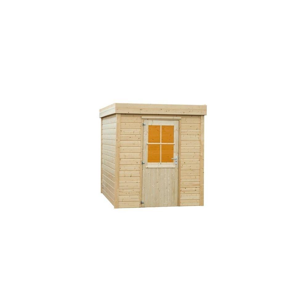 Abri de jardin toit plat bois massif 28mm plantes - Abri jardin bois 28mm ...