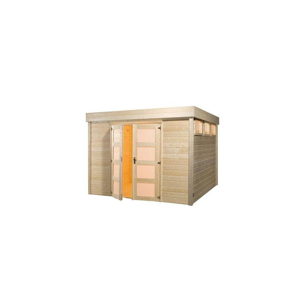 Abri de jardin toit plat bois massif 28mm porte for Porte en bois de jardin
