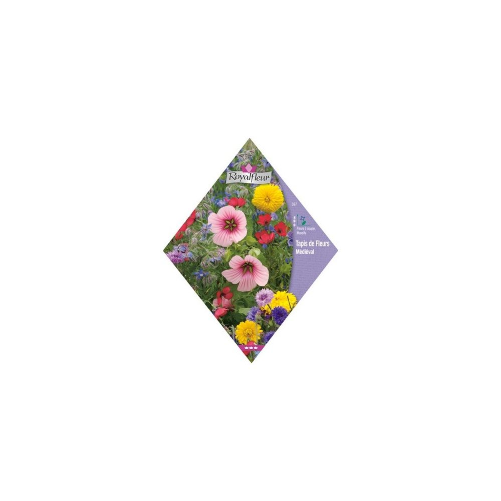 tapis de fleurs m di val plantes et jardins. Black Bedroom Furniture Sets. Home Design Ideas