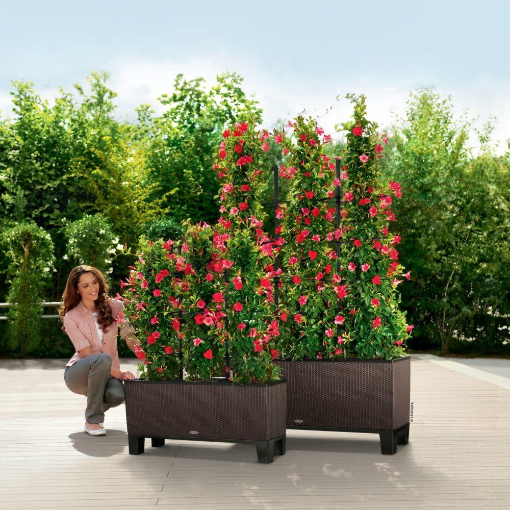 socle pour jardini re lechuza trio cottage 40 noir. Black Bedroom Furniture Sets. Home Design Ideas