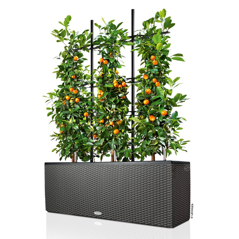 Jardini re lechuza trio cottage l100 h34 cm granit for Plante haute