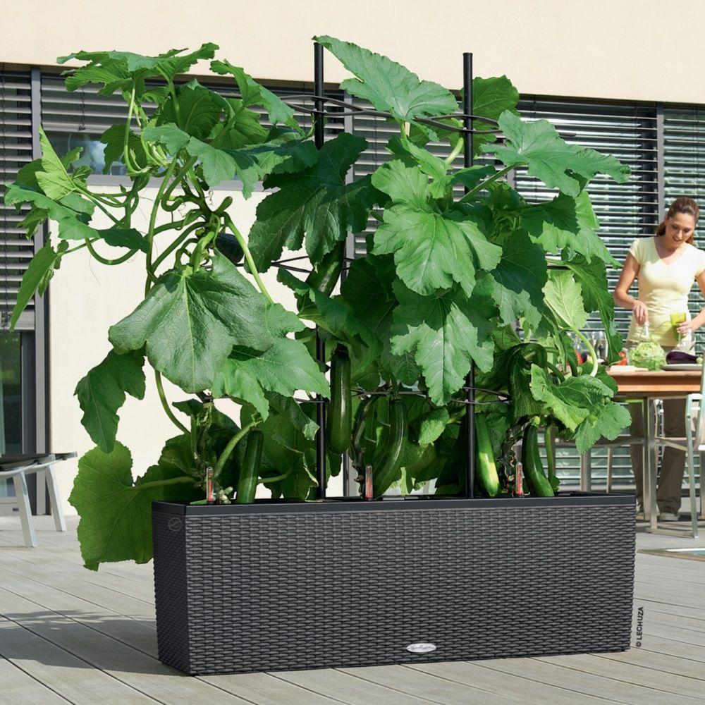 Jardini re lechuza trio cottage l130 h44 cm granit for Magasin de plantes pas cher