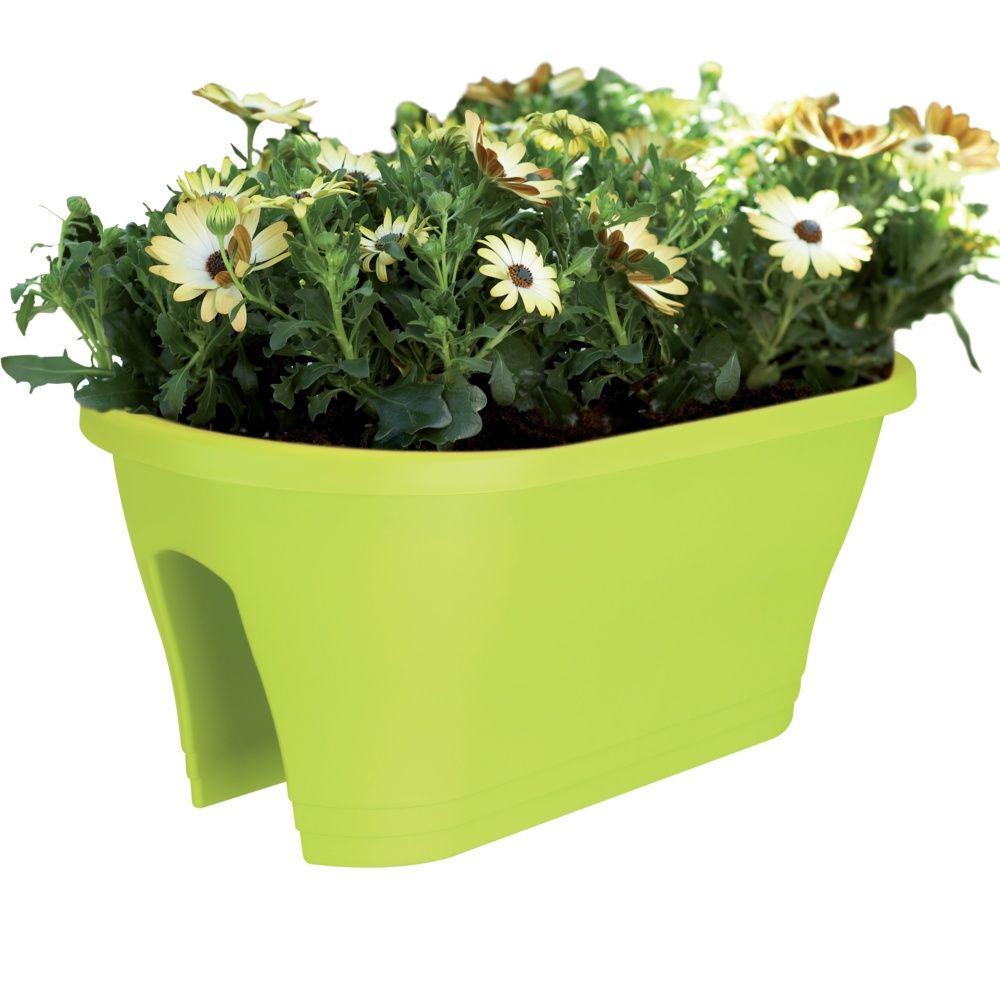jardini re elho corsica flower bridge l60 h24 cm citron vert plantes et jardins. Black Bedroom Furniture Sets. Home Design Ideas