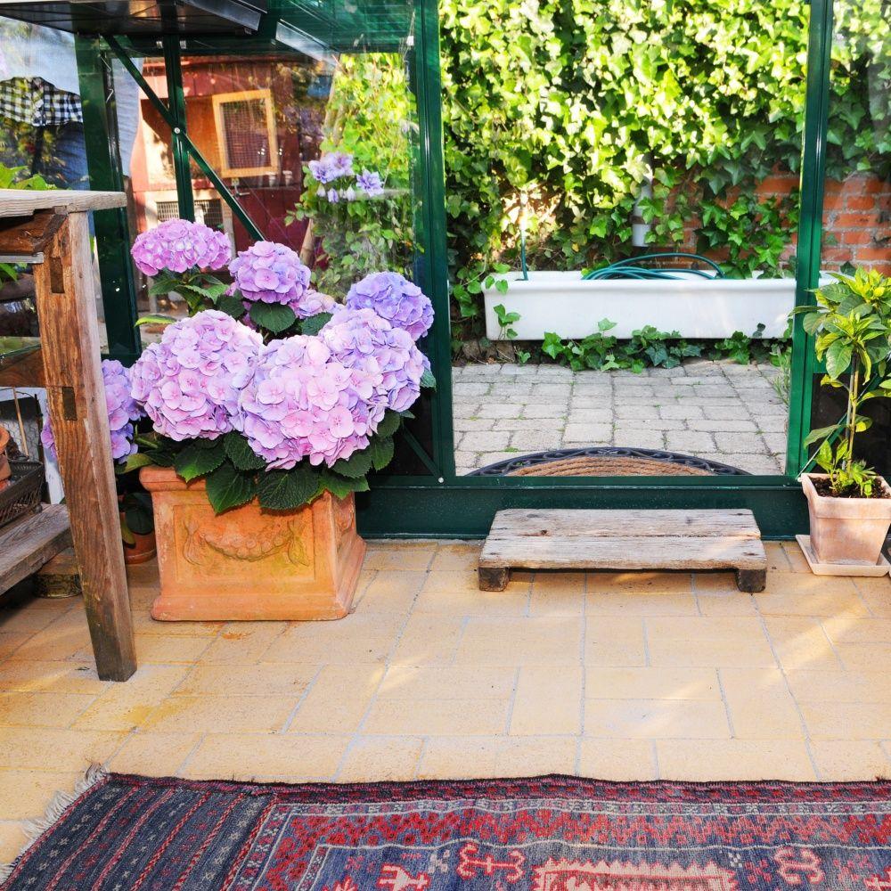 Serre de jardin compact plus polycarbonate 9.9 m²   juliana ...
