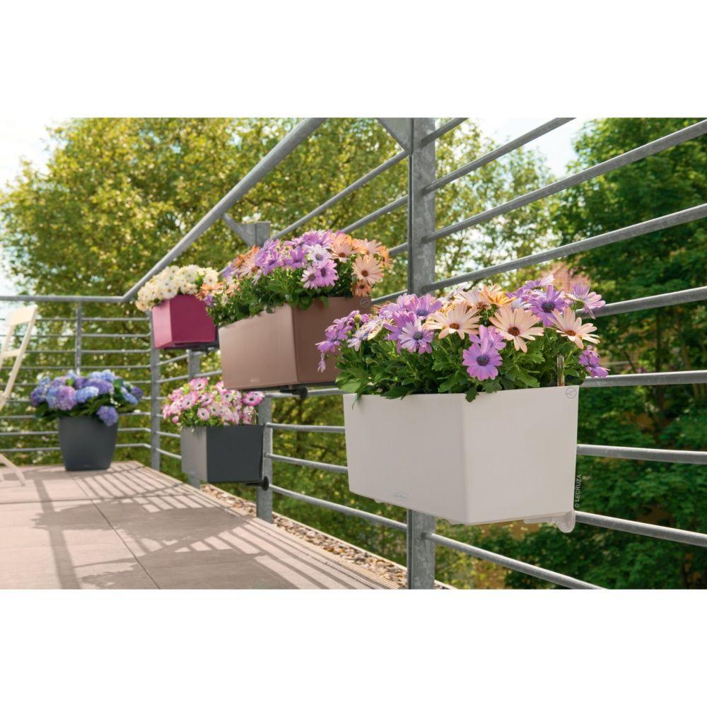 jardini re lechuza balconera trend l50 h19 cm blanc plantes et jardins. Black Bedroom Furniture Sets. Home Design Ideas
