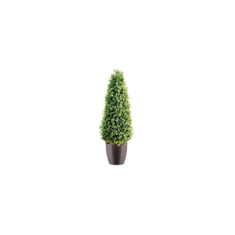 buis c ne h130cm tronc naturel feuillage artificiel pot elho gris plantes et jardins. Black Bedroom Furniture Sets. Home Design Ideas