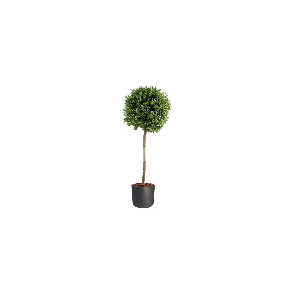 Buis boule tige h110cm tronc naturel feuillage artificiel pot elho anthracite plantes et - Buis boule sur tige ...