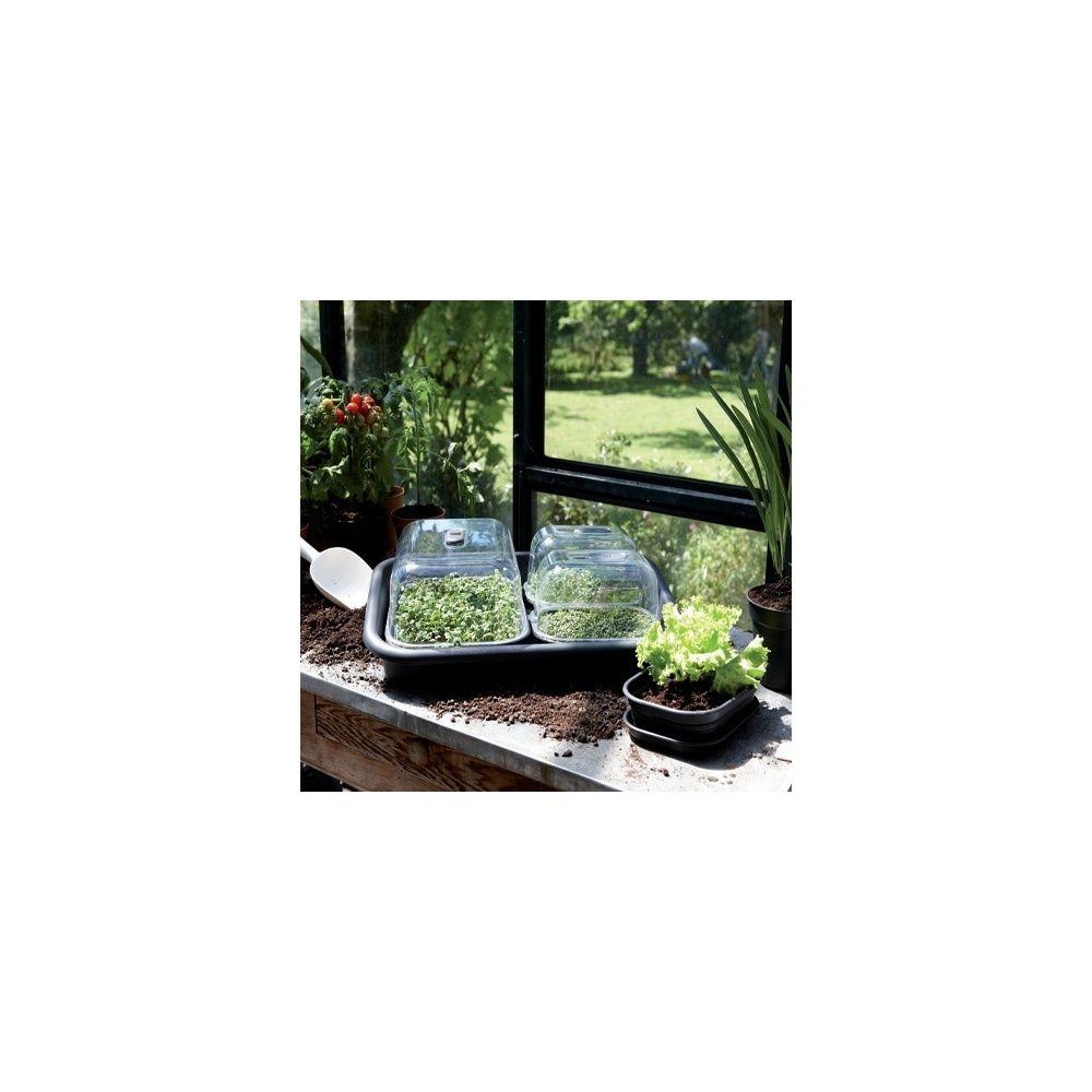 kit de culture complet green basics large noir et. Black Bedroom Furniture Sets. Home Design Ideas