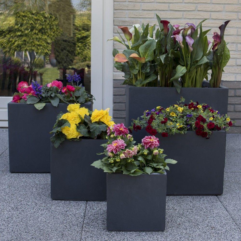 bac fleurs fibre de terre l55 h46 cm anthracite plantes et jardins. Black Bedroom Furniture Sets. Home Design Ideas