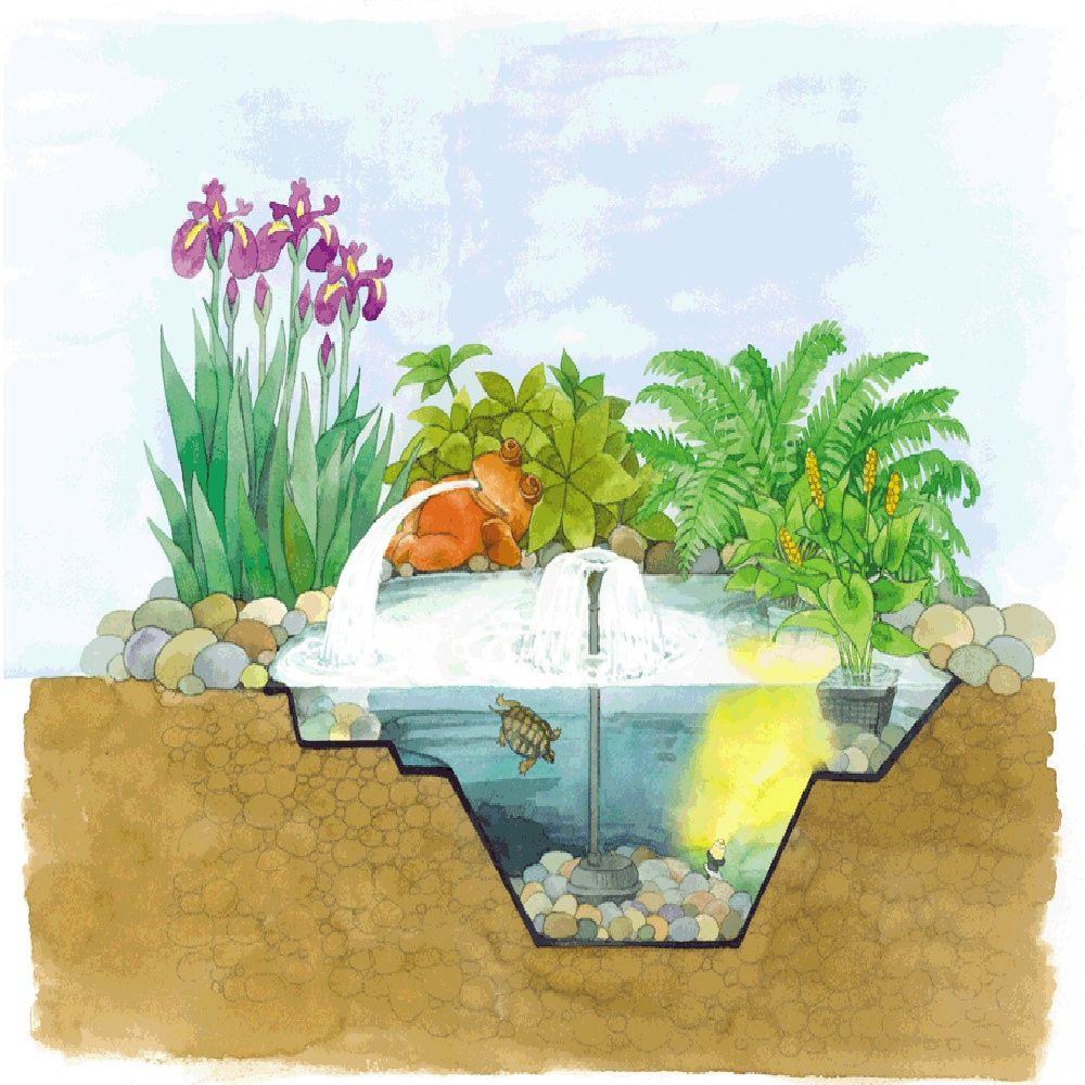 bassin pr form en poly thyl ne 250l oase plantes et jardins. Black Bedroom Furniture Sets. Home Design Ideas