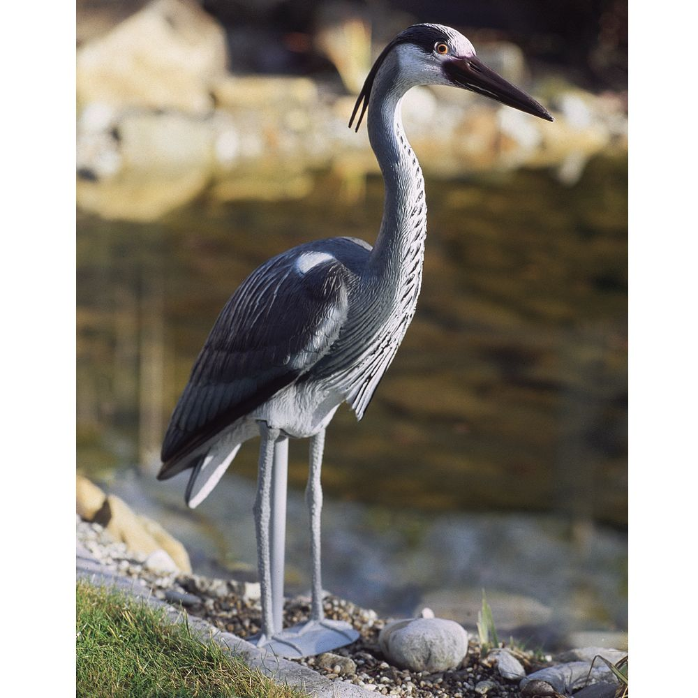 heron en plastique pour bassin 7 figurine de bassin h ron cendr oase. Black Bedroom Furniture Sets. Home Design Ideas