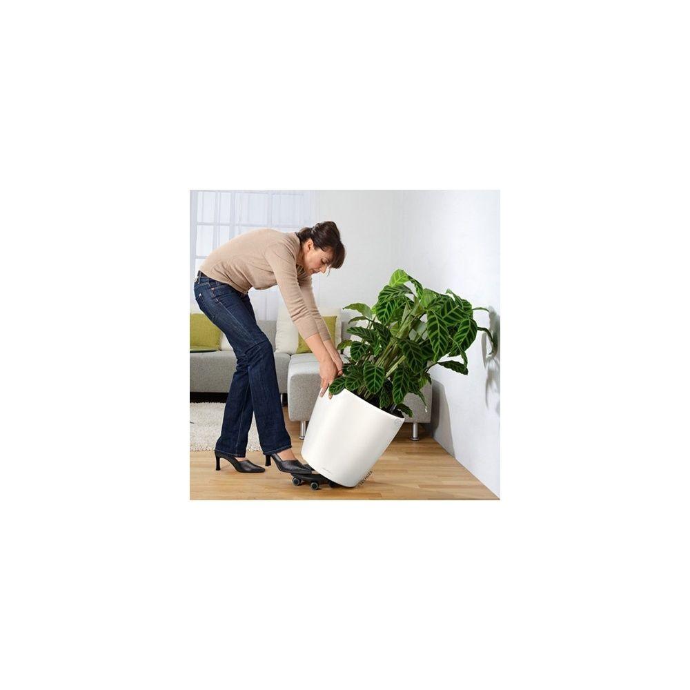 Support roulettes lechuza pour pots classico quadro 50 cm plantes et jardins - Support a roulettes pour plantes ...