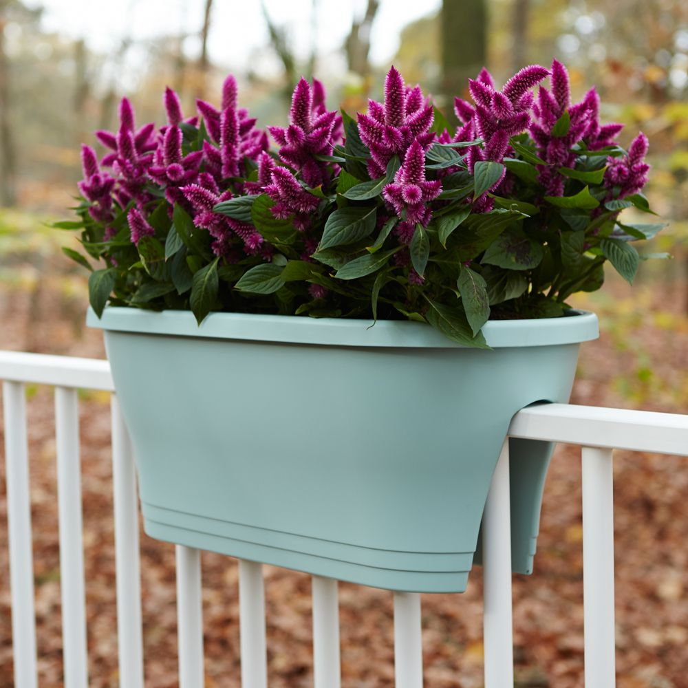 Jardini re elho corsica flower bridge l60 h24 cm menthe - Jardiniere moderne ...