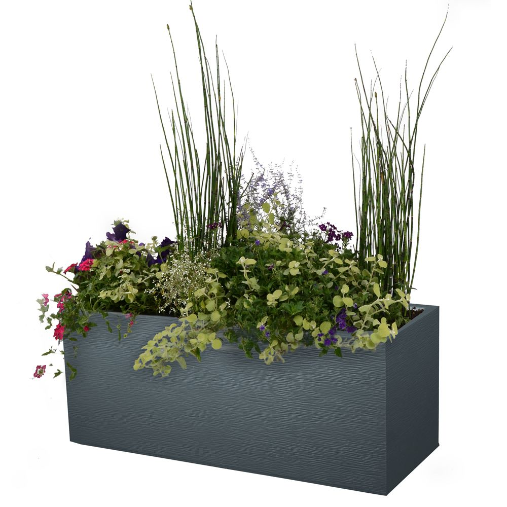 Jardini re graphit r sine l99 5 h43 cm anthracite for Plante verte haute