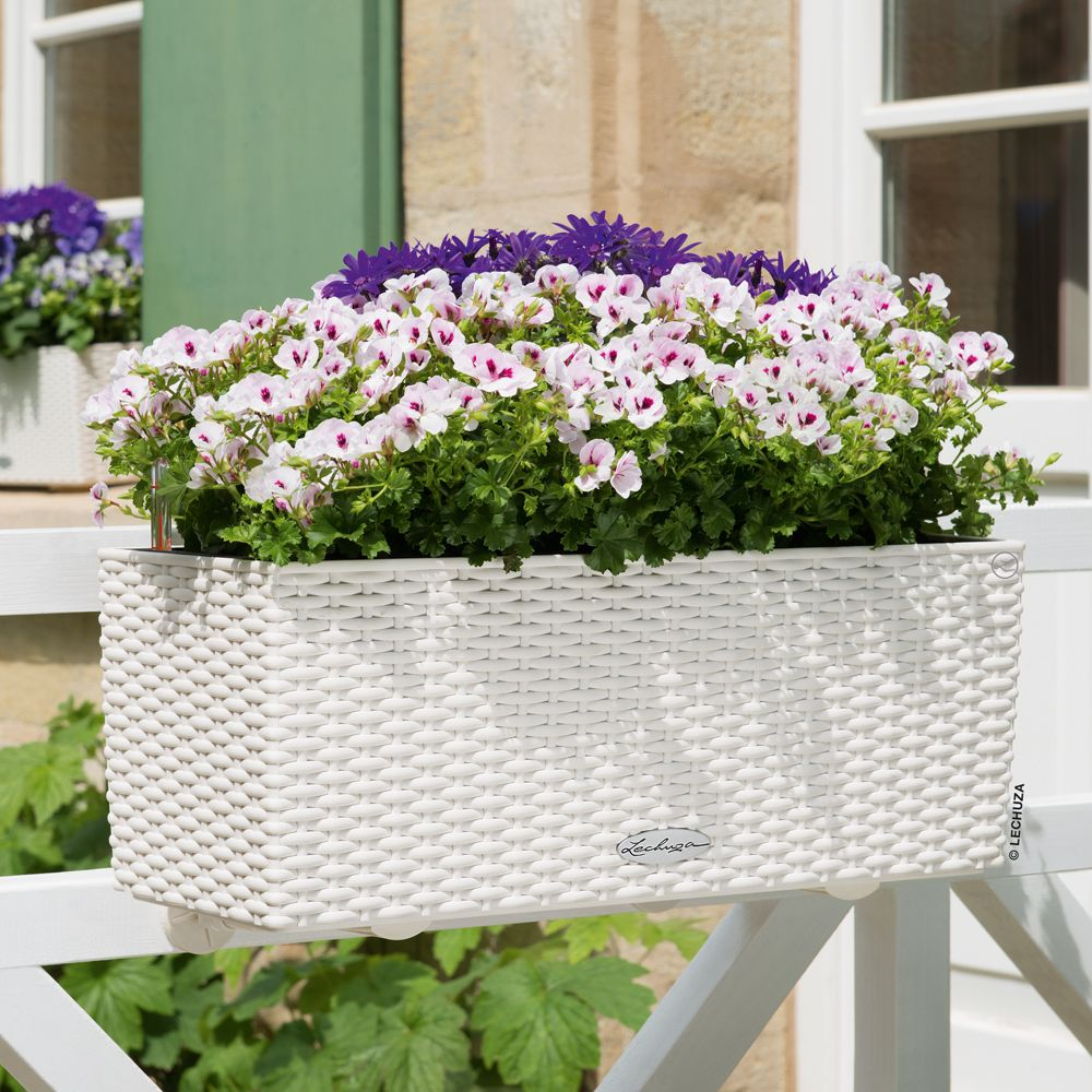 jardini re lechuza balconera cottage l50 h19 cm blanc plantes et jardins. Black Bedroom Furniture Sets. Home Design Ideas