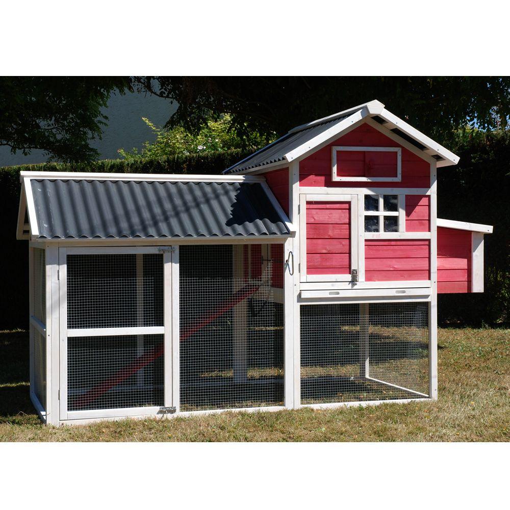 poulailler house ii 4 5 poules plantes et jardins. Black Bedroom Furniture Sets. Home Design Ideas