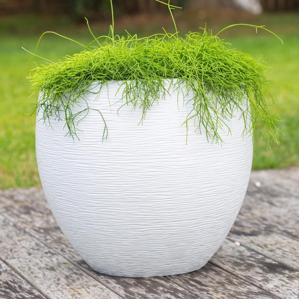 pot eda egg graphit r sine 50 h45 cm blanc plantes et jardins. Black Bedroom Furniture Sets. Home Design Ideas