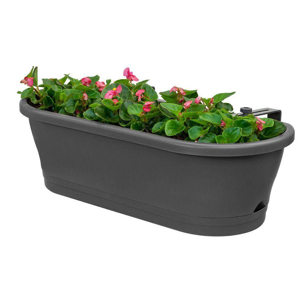 jardini re elho corsica easy balcony l59 h20 2 cm anthracite plantes et jardins. Black Bedroom Furniture Sets. Home Design Ideas