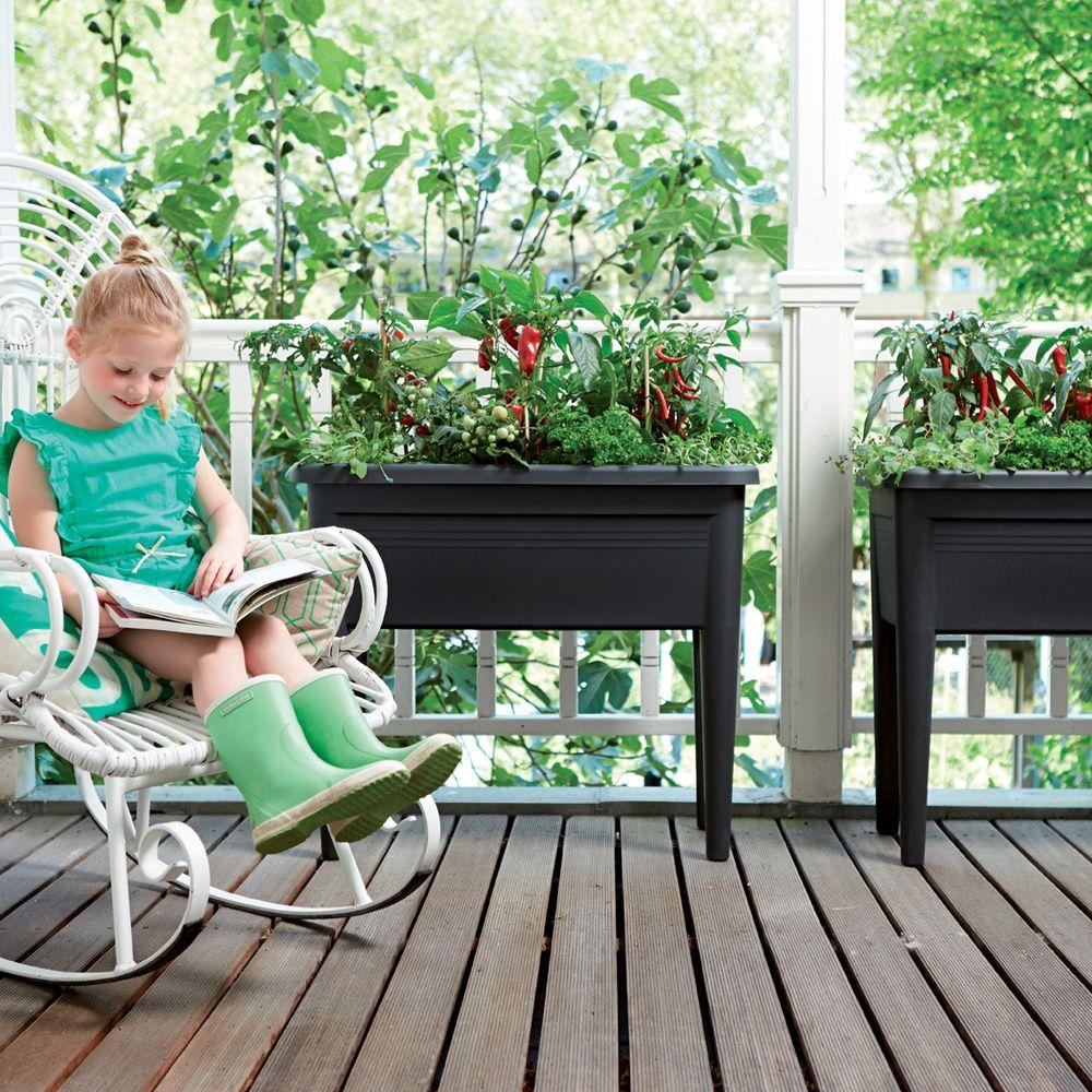 carr potager sur pieds elho green basics l76 h65 1 cm noir plantes et jardins. Black Bedroom Furniture Sets. Home Design Ideas