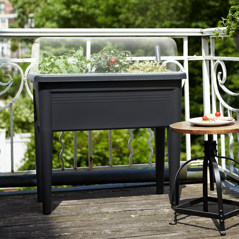 carr potager avec cloche elho l76 h65 1 cm noir plantes et jardins. Black Bedroom Furniture Sets. Home Design Ideas